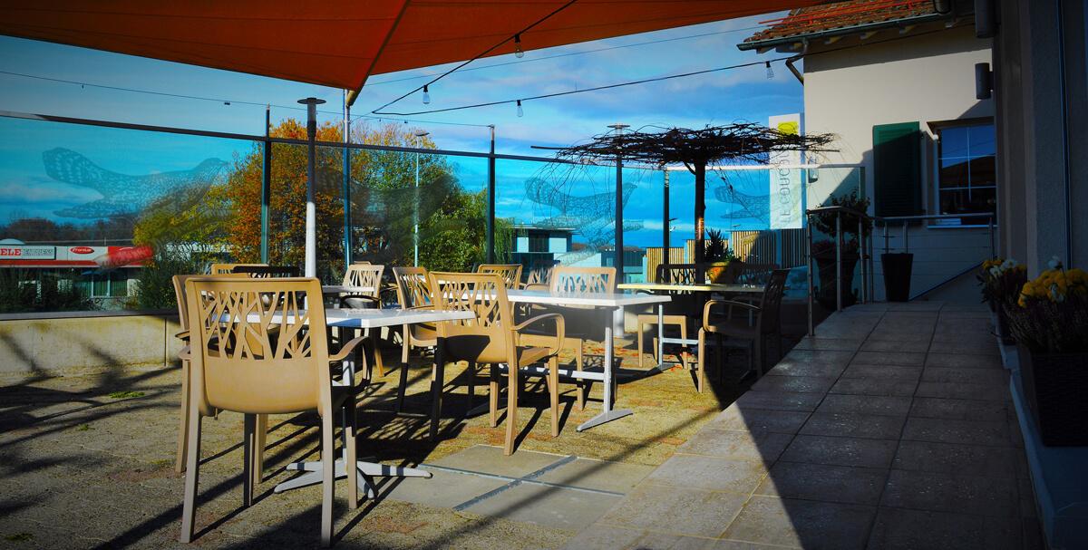 Restaurant Terrasse Mont D Or