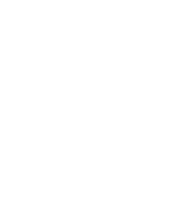 icone-mobilite-reduite